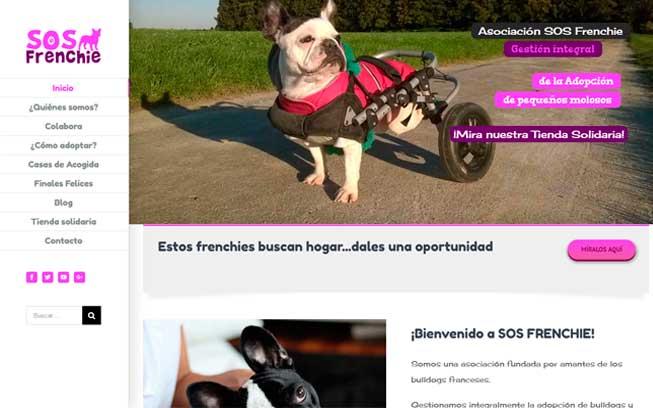 Diseño web responsive - Msalas Kreación