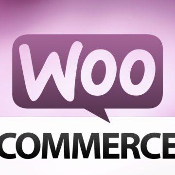 Añadir el campo Nif en Woocommerce de una manera cómoda y fácil, mini vídeo tutorial