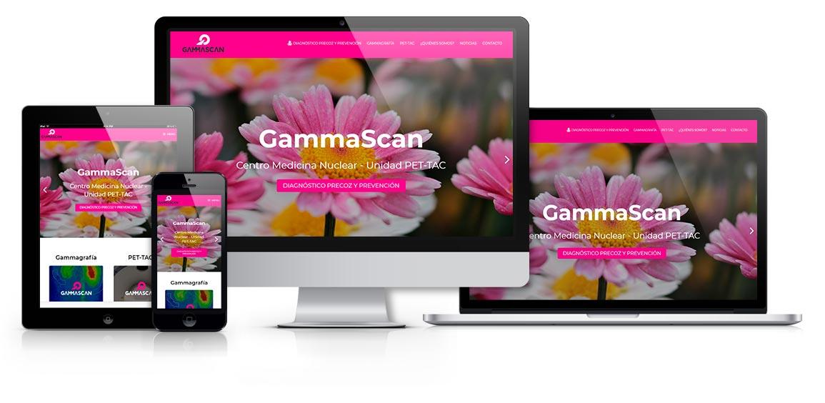 GammaScan centro de medicina nuclear - msalaskreación web